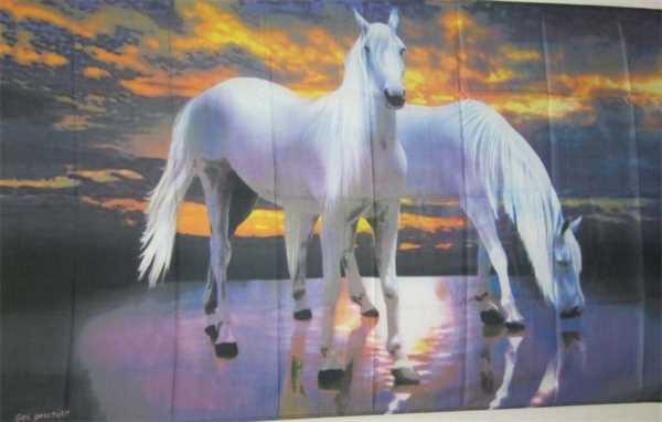 Pferd 1 Flagge 90x150 cm,160 Dernier (G)