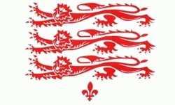 Dorset Flagge 90x150 cm