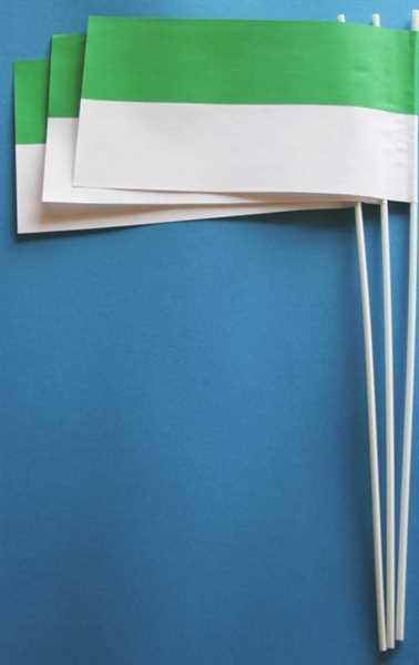 Schützenfest grün-weiß Papierflagge VPE 50 Stück