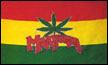 Marihuana Canabis Flagge 90x150 cm