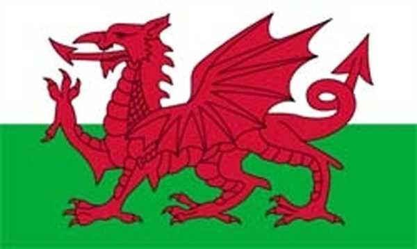 Wales Flagge 150x250 cm