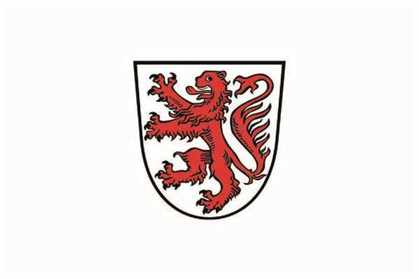 Braunschweig mit Wappen Stadt Flagge 90x150 cm