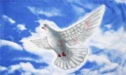 Friedensfahne mit Taube Flagge 90x150 cm
