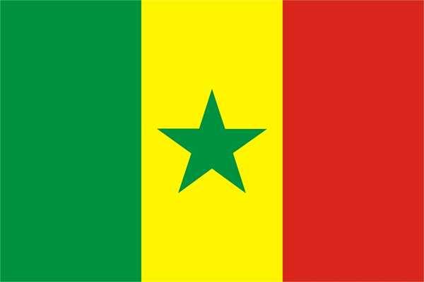 Senegal Bootsflagge 30x45 cm