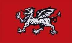 England weißer Drache Flagge 90x150 cm