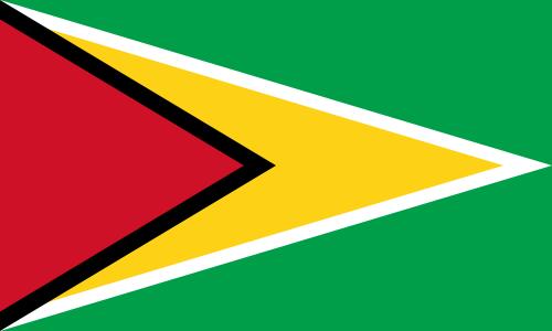 Guyana Flagge 90x150 cm