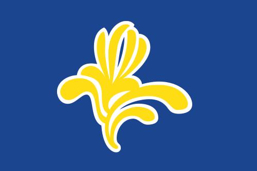 Brüssel (Region) Flagge 90x150 cm