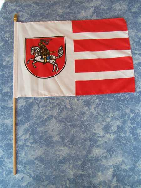 Dithmarschen Stockflagge 30x45 cm,160 Dernier (G)A