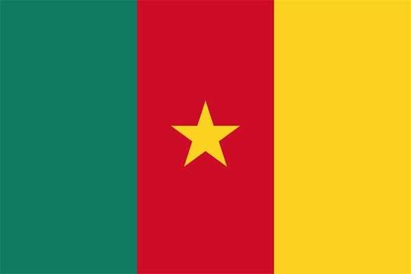 Kamerun Flagge 90x150 cm